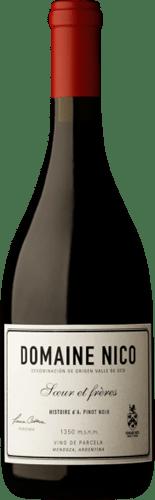 INFORME DE VINOS TINTOS: Los mejores Pinot Noir de Argentina 2