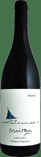 INFORME DE VINOS TINTOS: Los mejores Pinot Noir de Argentina 37