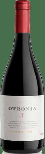 INFORME DE VINOS TINTOS: Los mejores Pinot Noir de Argentina 1