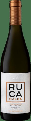 INFORME DE VINOS TINTOS: Los mejores Pinot Noir de Argentina 35