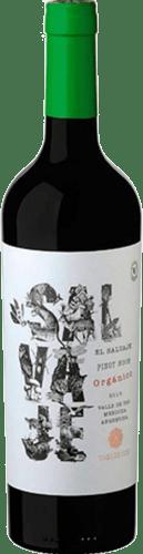 INFORME DE VINOS TINTOS: Los mejores Pinot Noir de Argentina 33