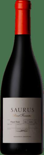 INFORME DE VINOS TINTOS: Los mejores Pinot Noir de Argentina 26
