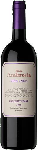 INFORME DE TINTOS: estos son los mejores vinos Cabernet Franc de Argentina 41