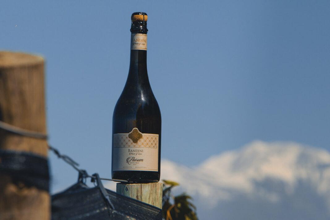 vinos de Finca Bandini