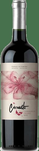 INFORME DE TINTOS: estos son los mejores vinos Cabernet Franc de Argentina 26
