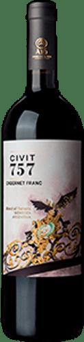 INFORME DE TINTOS: estos son los mejores vinos Cabernet Franc de Argentina 53