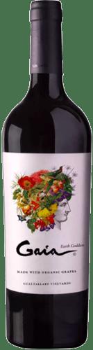 INFORME DE TINTOS: estos son los mejores vinos Cabernet Franc de Argentina 36