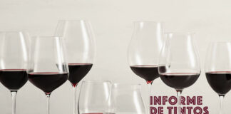 mejores pinot noir argentinos