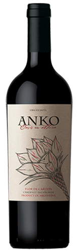 INFORME DE TINTOS: estos son los mejores vinos Cabernet Sauvignon de Argentina 20