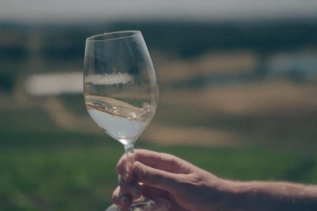 vinos semillón
