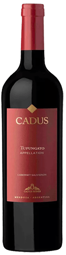 INFORME DE TINTOS: estos son los mejores vinos Cabernet Sauvignon de Argentina 21