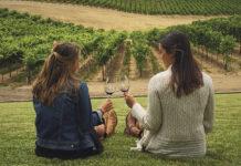 Encuentro vitivinícola bonaerense
